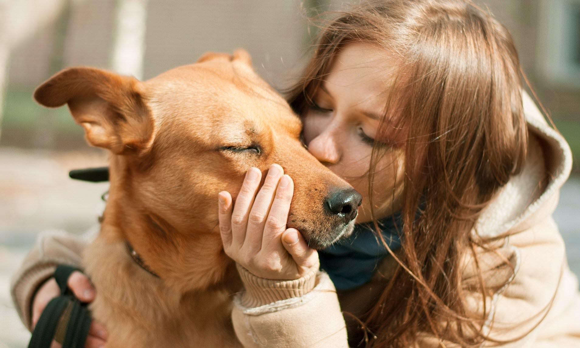 Pflegetipps für Haustiere